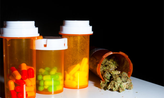 Doctors in Colorado Will be Able to Recommend Marijuana in Place of Opioids